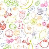 Nahtloses Muster der Früchte und der Beeren Stockbilder