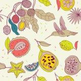 Nahtloses Muster der Frucht Stockfotos