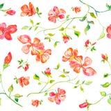 Nahtloses Muster der handgemachten Illustration des Aquarells der roten Blumen Stockbilder