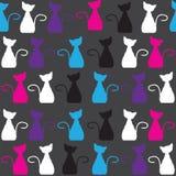 Nahtloses Muster der hellen Katze und nahtloser Rüttler Stockfotos