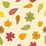 Nahtloses Muster der Herbstblätter Stockfoto