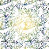 Nahtloses Muster der Iris Aquarellmalerei Tapete Stockbilder