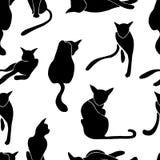 Nahtloses Muster der Katzen Stockfotografie