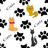 Nahtloses Muster der Katzen und der Tatzen Lizenzfreies Stockbild