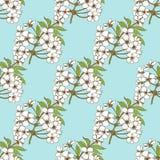 Nahtloses Muster der Kirschblüte Blumenmuster für textil Stockfotos