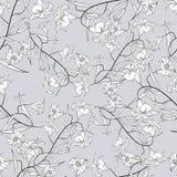 Nahtloses Muster der Lilie lizenzfreie abbildung