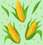 Nahtloses Muster der Maiskolben stock abbildung