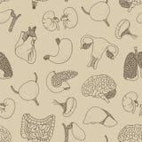Nahtloses Muster der menschlichen inneren Organe Lizenzfreie Stockbilder