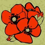 Nahtloses Muster der Mohnblume Lizenzfreies Stockbild