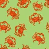 Nahtloses Muster der netten, hellen und bunten Sommerstrand-Krabbe stockfotos