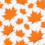 Nahtloses Muster der orange Ahornblätter, ein Hintergrund Lizenzfreies Stockfoto