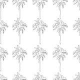 Nahtloses Muster der Palmen in Schwarzweiss Farbtonpapier, Seite, Buch Stockfotografie
