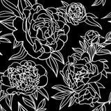 Nahtloses Muster der Pfingstrosenblumen-Spitzes Stockbilder