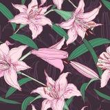 Nahtloses Muster der rosa Lilien Stockfotos