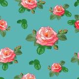 Nahtloses Muster der Rosen Stockbilder