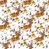 Nahtloses Muster der Rotwild Stockfoto