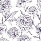 Nahtloses Muster der schönen Pfingstrosen Übergeben Sie gezogene Blütenblumen, -knospen und -blätter Lokalisiert auf Weiß Lizenzfreie Stockfotografie