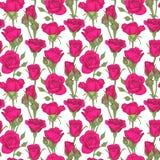 Nahtloses Muster der schönen Weinlese mit Rosen, Rosebuds, Blättern und Stämmen Designgrußkarte und Einladung von stock abbildung