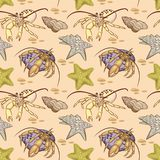 Nahtloses Muster der Seeoberteilsternfische und -Einsiedlerkrebses stock abbildung