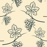 Nahtloses Muster der Traube Weinlese-Vektor stockbilder