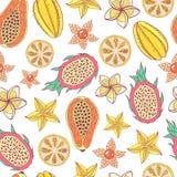 Nahtloses Muster der tropischen Frucht Buntes grafisches Lebensmittel backgroun lizenzfreie abbildung
