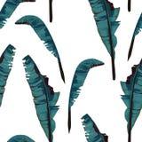 Nahtloses Muster der tropischen Sommermalerei mit Palmenbananenblatt stock abbildung