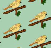 Nahtloses Muster der Vögel Lizenzfreie Stockbilder