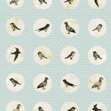 Nahtloses Muster der Weinlese mit netten kleinen Vögeln lizenzfreie abbildung