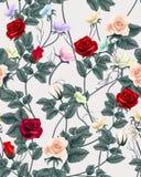 Nahtloses Muster der Weinlese mit Rosen Auch im corel abgehobenen Betrag Stockbild