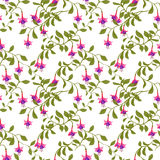 Nahtloses Muster der Weinlesetapete mit fuschia Blume Lizenzfreies Stockfoto