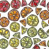 Nahtloses Muster der Zitrusfrucht-Zitrone, Orange, Kalk, Grapefruite Lizenzfreies Stockfoto