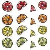 Nahtloses Muster der Zitrusfrucht-Zitrone, Orange, Kalk, Grapefruite Lizenzfreie Stockbilder