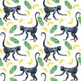 Nahtloses Muster des Affen Lizenzfreie Stockbilder