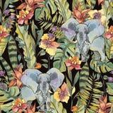 Nahtloses Muster des Aquarelldschungels, Blumen von Orchideen, Liane vektor abbildung