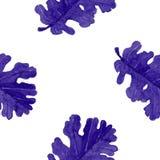 Nahtloses Muster des Aquarelleichen-Blattes, eigenhändig gemalt, Vektorbild Stockfotos