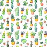 Nahtloses Muster des Aquarellkaktus Bunter vibrierender Kaktus in den Töpfen und in anderen Succulents Stockbild