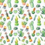 Nahtloses Muster des Aquarellkaktus Bunter vibrierender Kaktus in den Töpfen und in anderen Succulents Lizenzfreies Stockbild