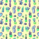 Nahtloses Muster des Aquarellkaktus Bunter vibrierender Kaktus in den Töpfen und in anderen Succulents Lizenzfreie Stockbilder
