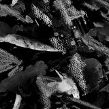 Nahtloses Muster des Aquarells Lizenzfreie Stockfotos