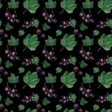 Nahtloses Muster des Aquarells Beeren und Bl?tter der roten und Schwarzen Johannisbeere lizenzfreie abbildung