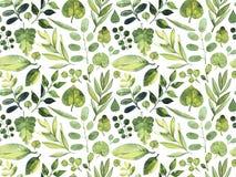 Nahtloses Muster des Aquarells Grünblätter von verschiedenen Anlagen auf einem weißen Hintergrund Lizenzfreies Stockbild