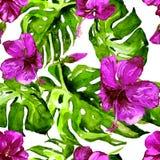 Nahtloses Muster des Aquarells Handgemalte Illustration von tropischen Blättern und von Blumen Tropisches Sommer-Motiv mit Hibisc Stockbilder