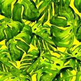 Nahtloses Muster des Aquarells Handgemalte Illustration von tropischen Blättern und von Blumen Tropisches Sommer-Motiv mit Monste Lizenzfreie Stockbilder