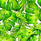 Nahtloses Muster des Aquarells Handgemalte Illustration von tropischen Blättern und von Blumen Tropisches Sommer-Motiv mit Monste Lizenzfreie Stockfotos