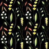 Nahtloses Muster des Aquarells des Herbstes Blätter, branchs und Blumen stockfotografie