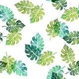 Nahtloses Muster des Aquarells mit Baumblättern Stockfotos