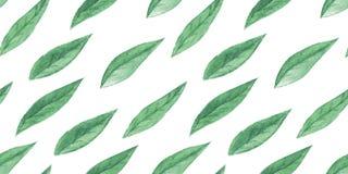 Nahtloses Muster des Aquarells mit Blättern Lizenzfreie Stockbilder