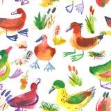 Nahtloses Muster des Aquarells mit Enten Blumenhintergrund mit c Stockfotos