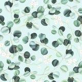 Nahtloses Muster des Aquarells mit Eukalyptusblättern und kleinen weißen Blumen auf Türkishintergrund lizenzfreie abbildung