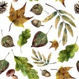 Nahtloses Muster des Aquarells mit Fallblättern Handgemalter grüner und gelber Herbstlaub, Pilze, Kiefernkegel, Eichel stock abbildung